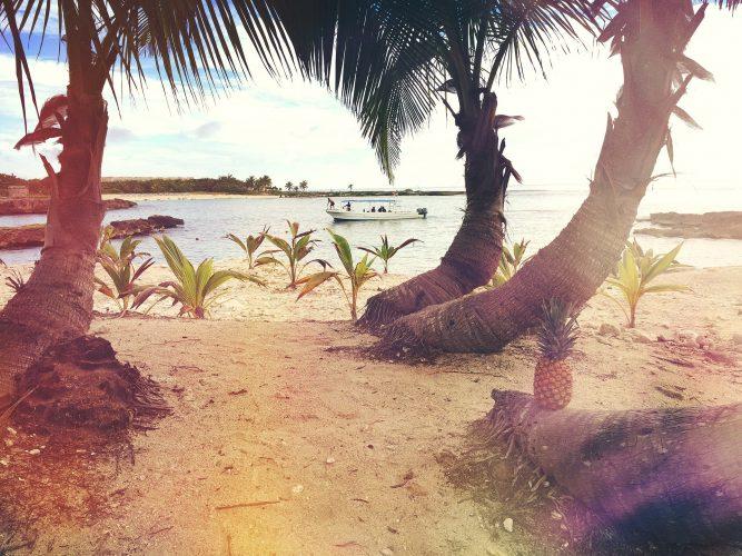 vakantie vieren als zzper